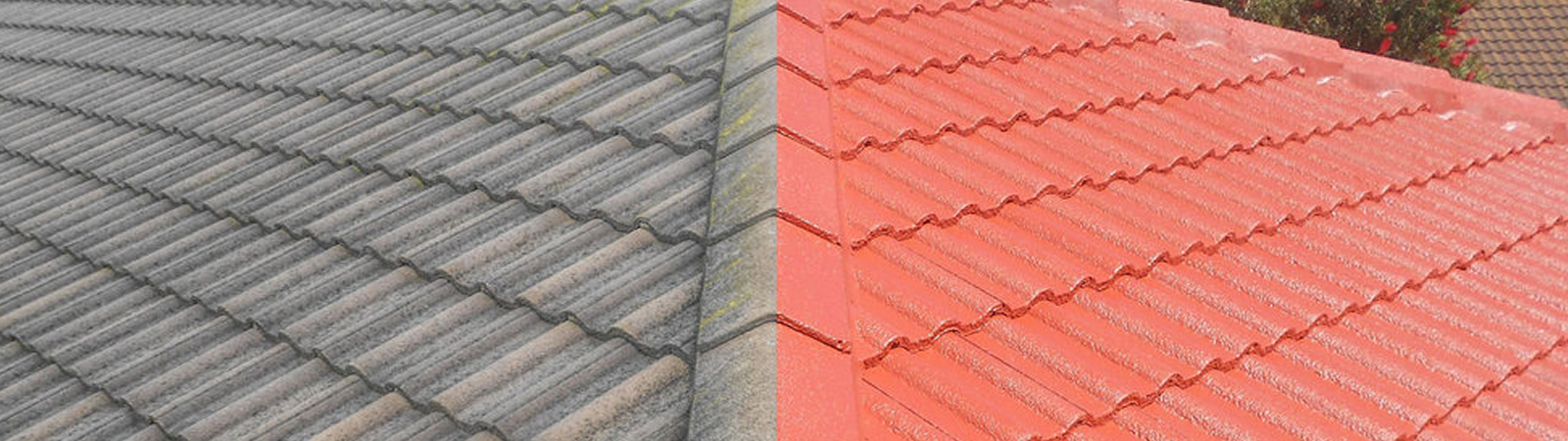 Roof Cleaning Specialist in UK !